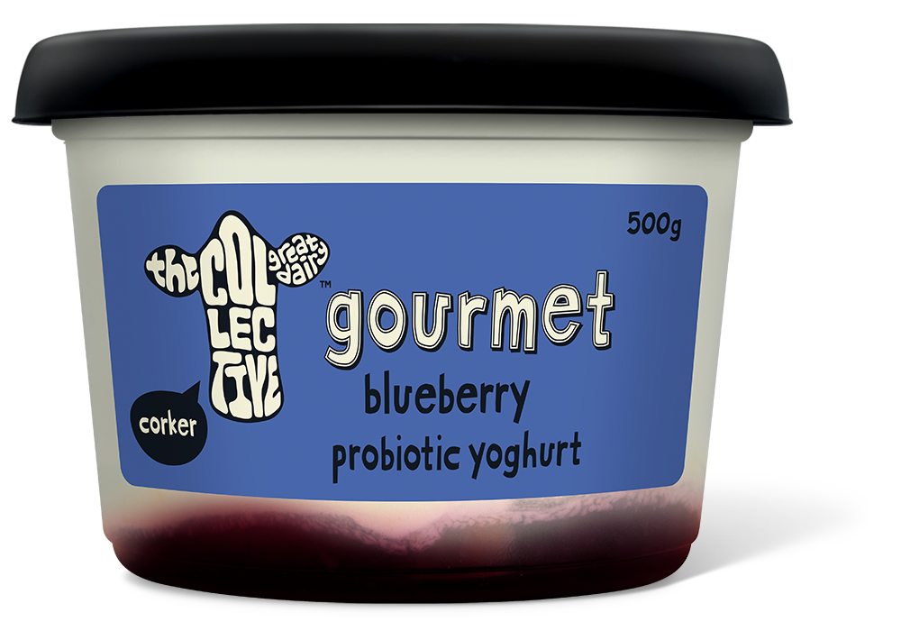 blueberry gourmet